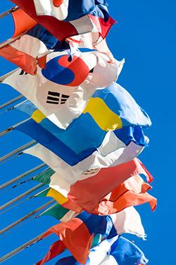banderas internacional