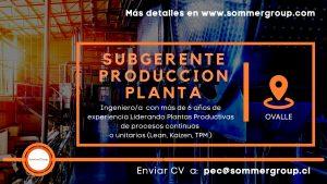 SubGerente de Producción de Planta
